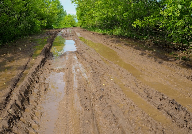 Estrada de terra em um prado da zona rural