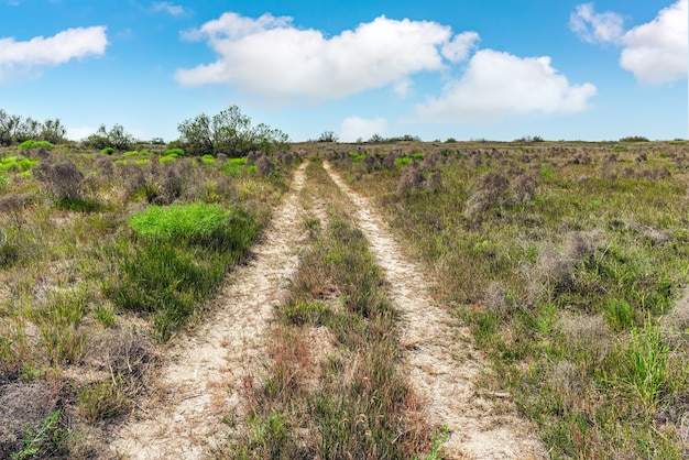 Estrada de terra na estepe