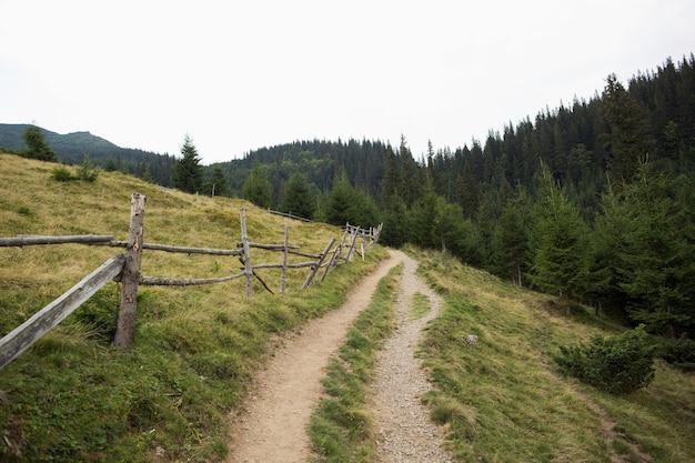 Estrada de terra nas montanhas verdes para turistas e caminhadas