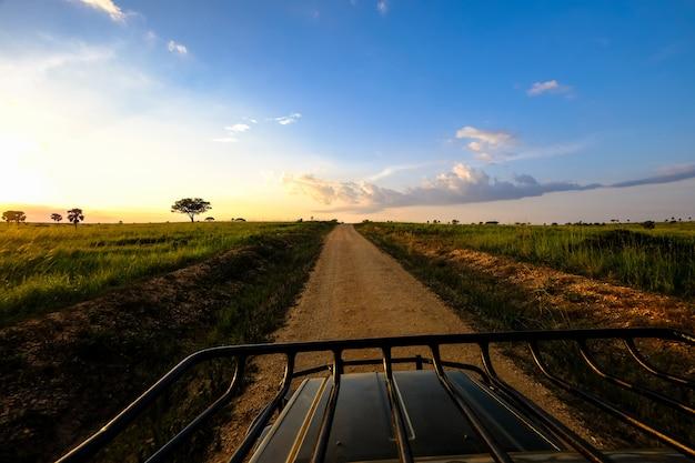 Estrada de terra no meio de um campo gramado com árvores e um céu azul