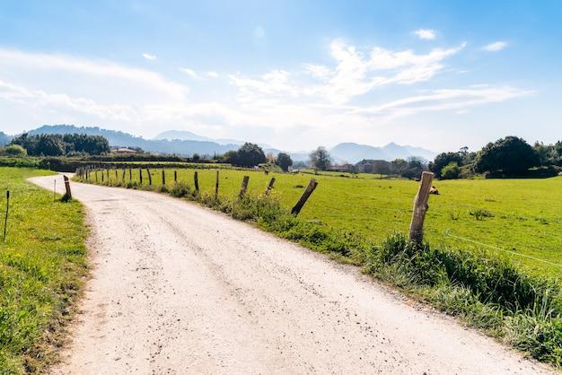 Estrada de terra no meio de um campo gramado sob um céu azul durante o dia