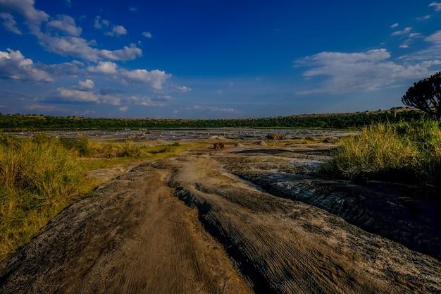 Estrada de terra no meio dos campos gramados com árvores à distância e céu azul