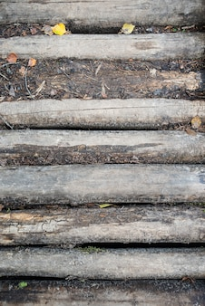 Estrada de toras velha toras velhas sem casca ponte de toras
