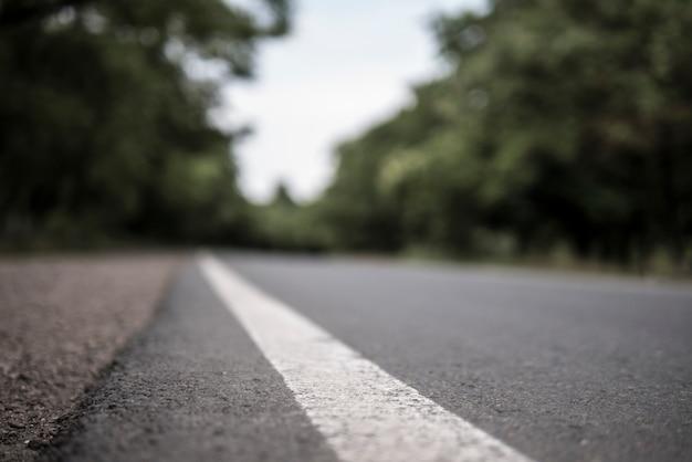 Estrada de verão nas árvores. linha divisória