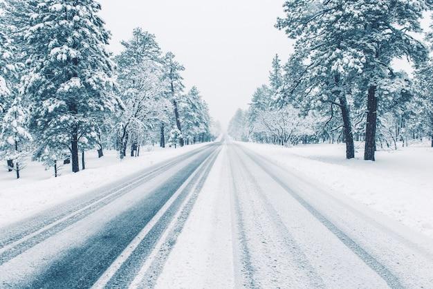 Estrada do inverno coberta pelo gelo