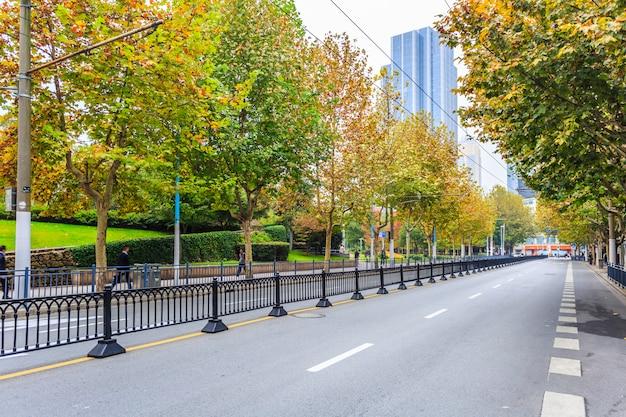 Estrada e árvores