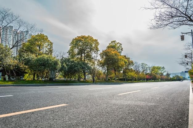 Estrada e vegetação em um dia nublado