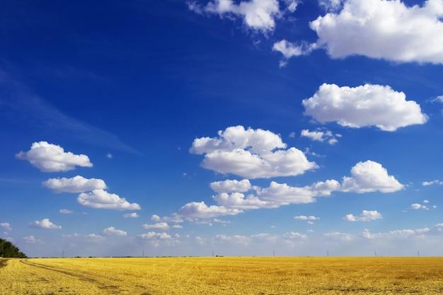 Estrada em campo e céu azul com nuvens. bela paisagem