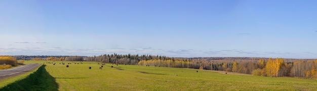 Estrada entre campos com fardos de feno no outono. campo agrícola com céu e nuvens. a natureza da agricultura. palha no prado. paisagem natural rural. a colheita do grão e a colheita.