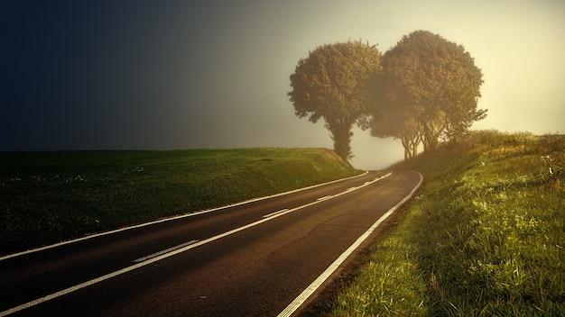Estrada entre grama