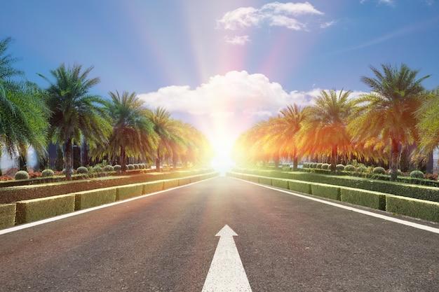 Estrada, estrada de asfalto preto e sinal de linha branca com árvore verde plam à beira da estrada e fundo de céu azul, conceito para a próxima etapa.