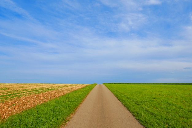 Estrada. estrada do campo sob um céu azul.