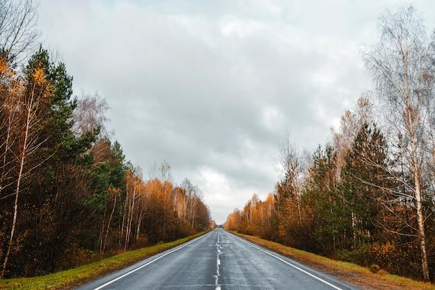 Estrada, estrada na floresta de outono