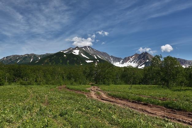 Estrada florestal nas montanhas em dia ensolarado