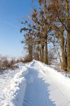 Estrada gelada de inverno