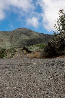 Estrada, goind, ligado, um, colina tropical