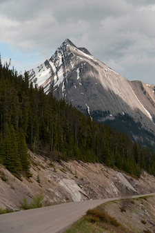 Estrada lago maligne, jasper parque nacional, alberta, canadá
