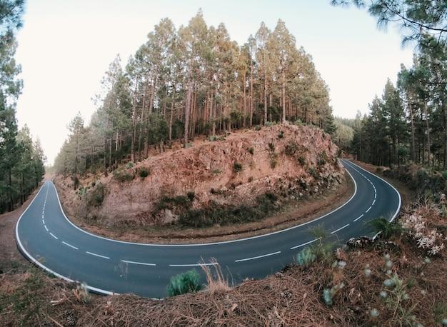 Estrada na floresta ao redor de uma montanha