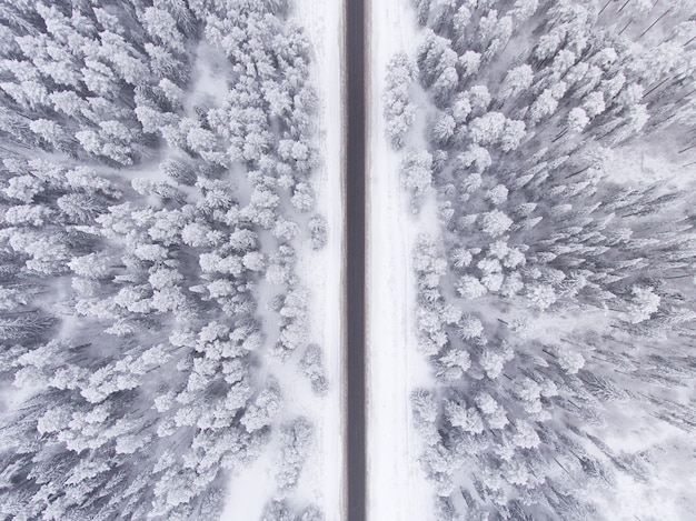 Estrada na floresta de inverno nevado vista aérea