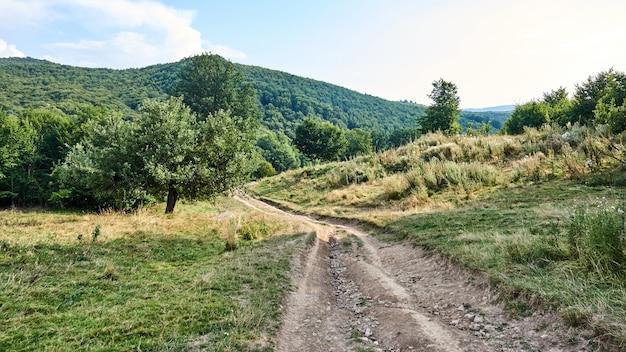 Estrada nas montanhas da romênia