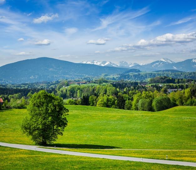 Estrada no campo pastoral