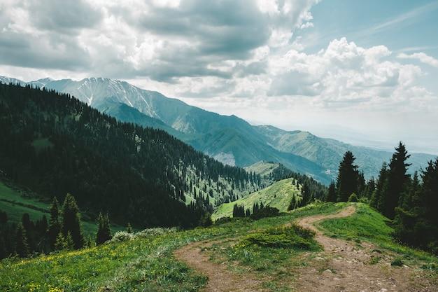 Estrada no cume nas montanhas com uma floresta no verão