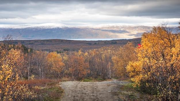 Estrada no parque nacional abisko na suécia polar no outono dourado