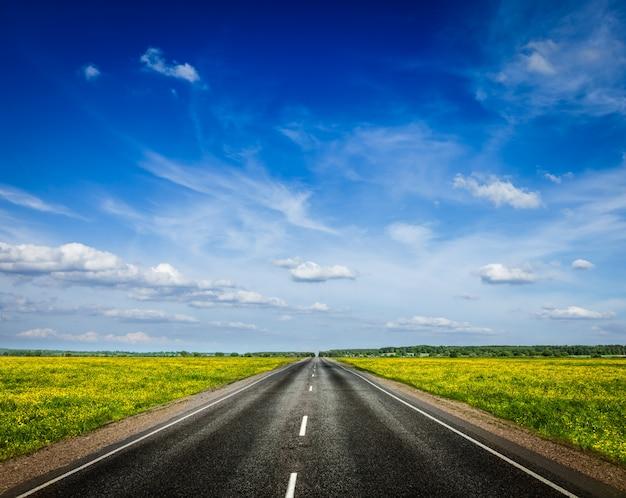 Estrada no prado primavera desabrocham