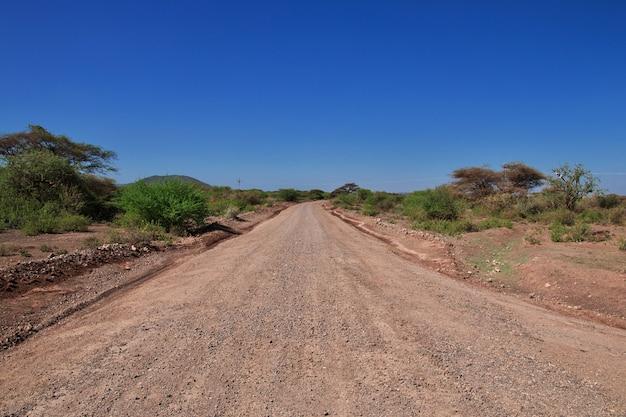 Estrada para a aldeia de bosquímanos, áfrica