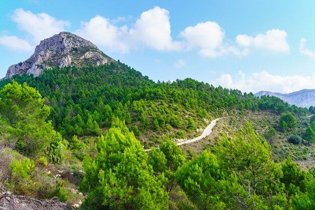 Estrada para o pico da montanha verde com árvores e nuvens no céu.