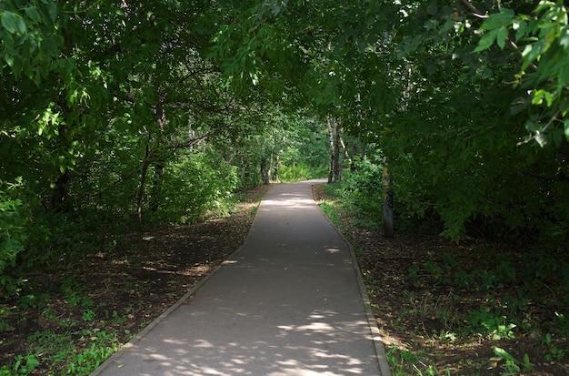 Estrada para o verão no fundo do parque da cidade
