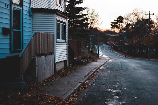 Estrada pavimentada preta e folhas