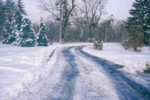 Estrada pelo parque no dia de inverno