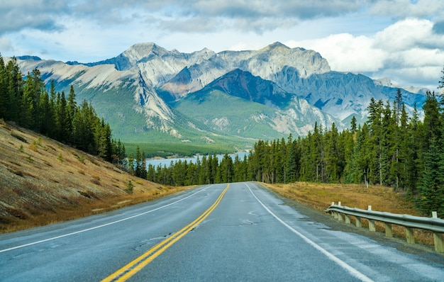 Estrada rodoviária na floresta, alberta highway 11 david thompson hwy, parque nacional de jasper, canadá.