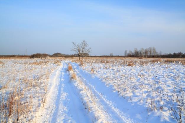 Estrada rural através do campo de inverno