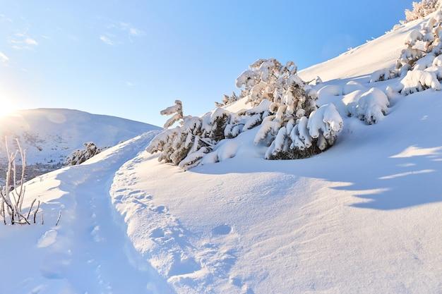 Estrada rural com neve nas montanhas