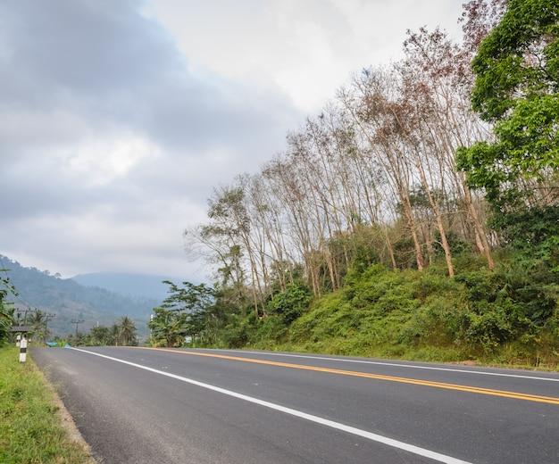 Estrada rural com nevoeiro