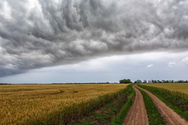 Estrada rural entre campos em uma tempestade de verão