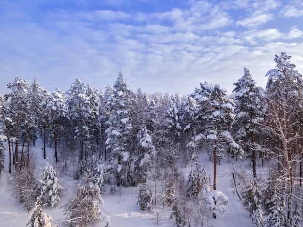 Estrada rural na floresta de inverno árvores no céu azul de neve com nuvens no fundo vista aérea