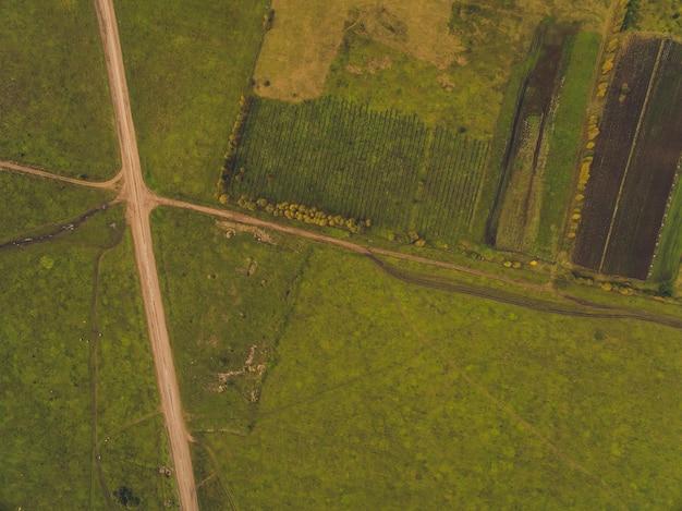 Estrada rural nos campos de trigo