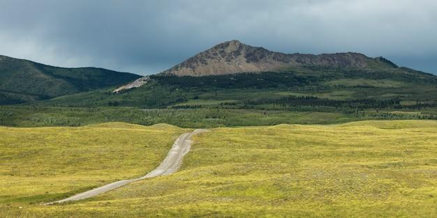 Estrada rural, passagem, paisagem, bisonte, paddock, waterton lagos parque nacional, sulista, albert