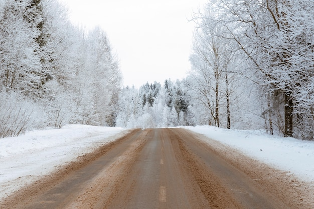 Estrada vazia através da bela floresta de inverno