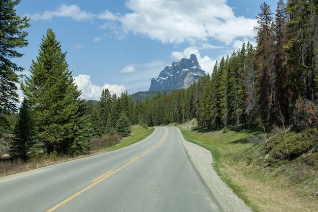 Estrada vazia no meio de uma floresta com a castle mountain em alberta, canadá