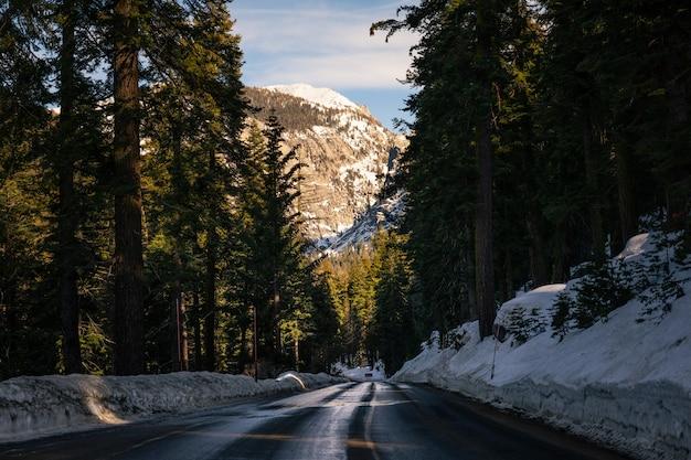 Estradas pelo sequoia national park, na califórnia