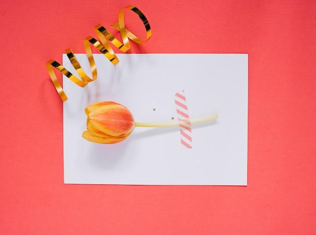 Estrela de férias decorações e branco limpo em branco com tulipa em fundo coral