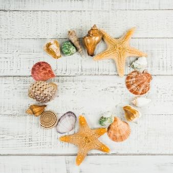 Estrela de peixe e conchas do mar sobre o fundo de madeira