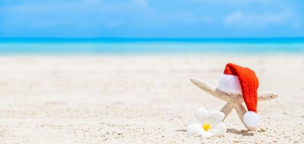 Estrela do mar branca com chapéu de papai noel em uma praia de areia