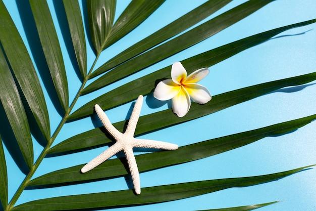 Estrela do mar com flor de plumeria ou frangipani em folhas de palmeira tropical no azul