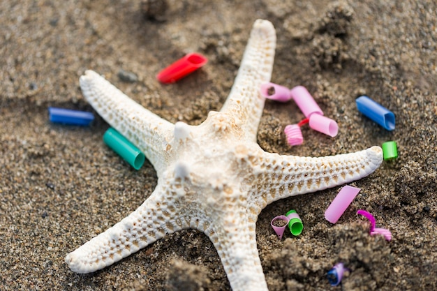 Estrela do mar com pedaços de plástico