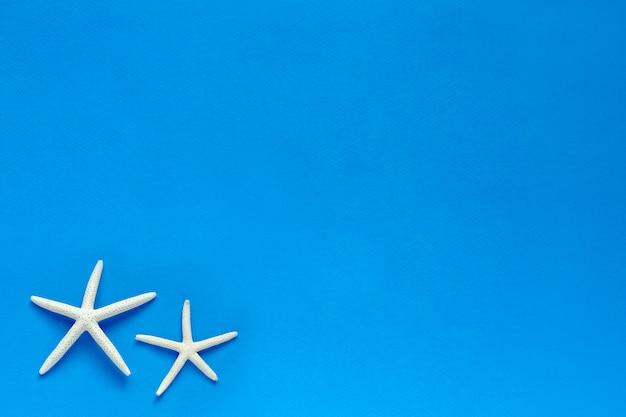 Estrela do mar de dedo branco sobre fundo azul